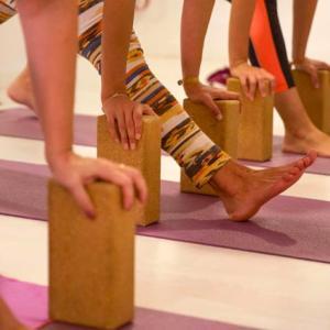 Yoganet